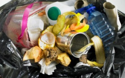 EU poll finds householders out of touch on waste