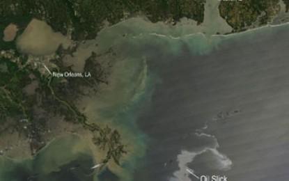 Gulf spill scientists get £69m boost
