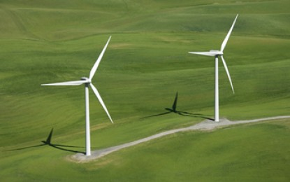 "Industry ""shock"" at Hayes anti-wind jibes"