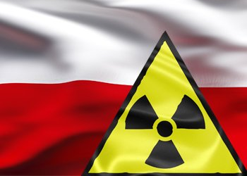 Poland working on strategies for first nuclear plant