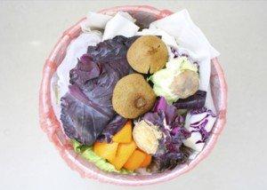 Food-waste-bin-350