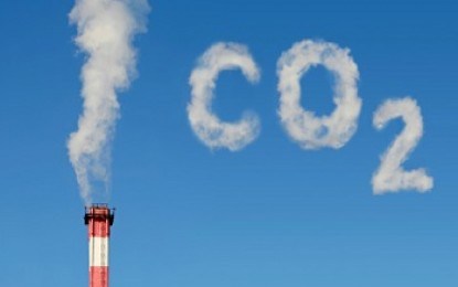 Major businesses call on Government to back carbon targets