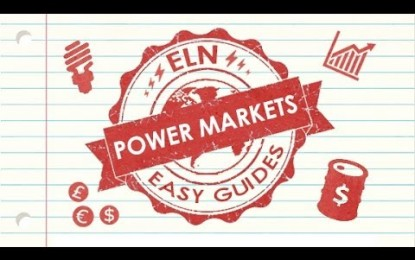ELN Easy Guide to the Power Markets