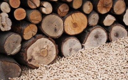 Forth Energy pulls out of £1.1bn biomass projects