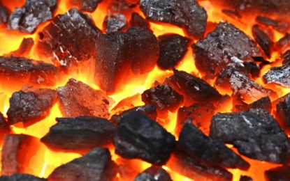 Indian Supreme Court cancels 214 illegal coal licences