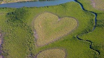 The 'Coeur de Voh' or 'Heart of Voh'