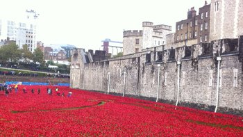 Art installation, 'Blood Swept Lands and Seas of Red', at the Tower of London. Image: ELN / Vicky Ellis