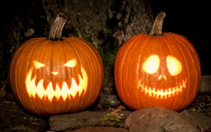 Life after death for Halloween pumpkins – as energy!