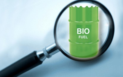 Biofuel process 'more efficient than photosynthesis'