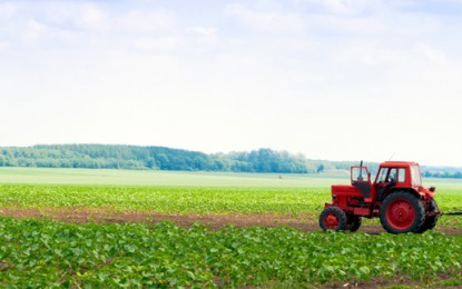 UK farms 'hold 10GW of untapped green energy'