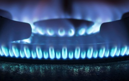 Finland boosts stake in gas utility to 75%