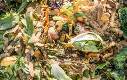 Diverting food waste from landfill could be worth $22m