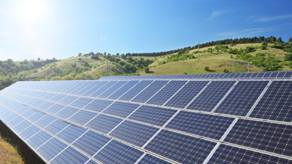 A solar farm. Image: Thinkstock