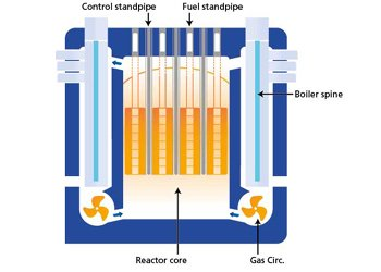 Diagram of an AGR (advanced gas-cooled reactor), showing its boiler spines. Image: EDF Energy