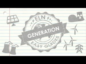 ELN Easy Guide to Generation