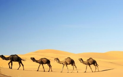 Renewables help water-scarce areas in the Middle East