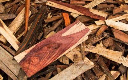 How wood the defendant like to plead?