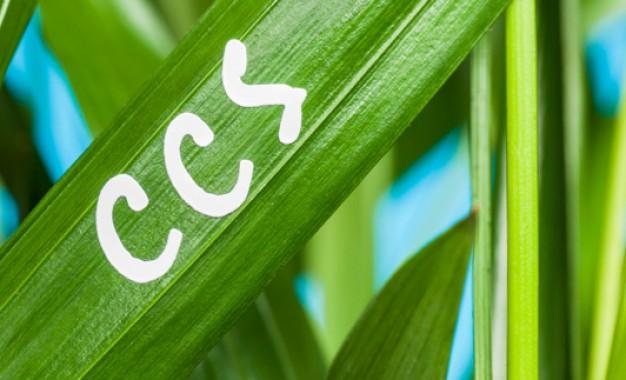 UK energy consultancy wins £2.5m CCS contract