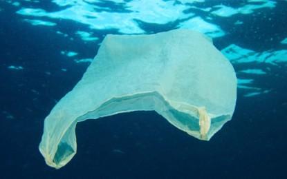 New EU laws on plastic bags