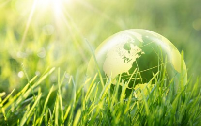 Global financiers launch green investment criteria