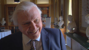 Sir David Attenborough named ambassador for biodiversity review