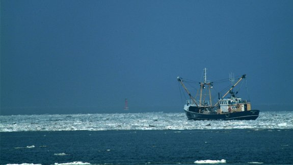 German North Sea Region. Image: Dirkpurz / Thinkstock