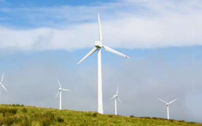 Global wind capacity forecast to hit 800GW by 2021
