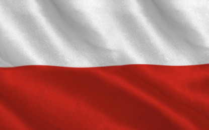 Poland to receive PLN 2bn to boost energy sector