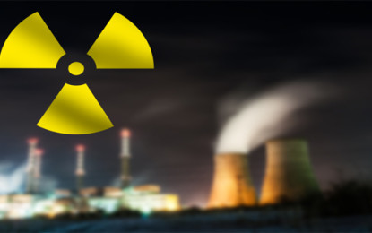 Asia seen as 'driver of nuclear energy'