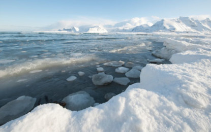 MEPs vote to ban oil drilling in Arctic