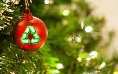 Households urged to 'treecycle' festive rubbish