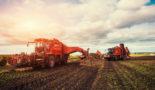 UK 'should reward green farmers post-Brexit'