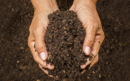 MPs warn on neglected and polluted UK soils