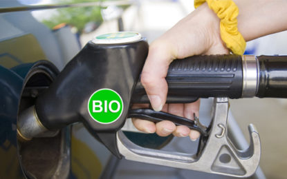 Biofuels worse than petrol for climate, study claims