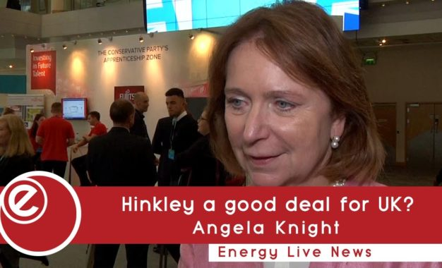 Hinkley is the way forward for the UK, says Angela Knight