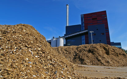 Is biomass dirtier and costlier for coal phase out?