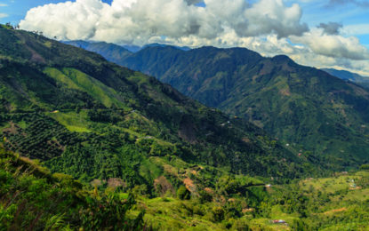 UK-Colombia announce £20m bioeconomy research