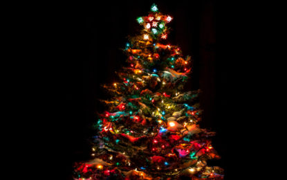 Light your tree or go on a Christmas journey…