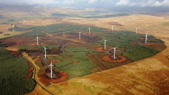 Uk wind farm essay