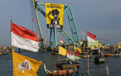 Activists stop work at SE Asia's biggest coal plant