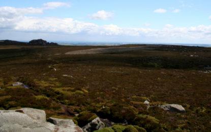 Peatland restoration secures £10m to cut emissions