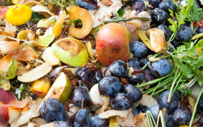 Food waste collections 'needed to get London green'