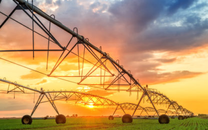 Food and agriculture 'urgently needs to go green'