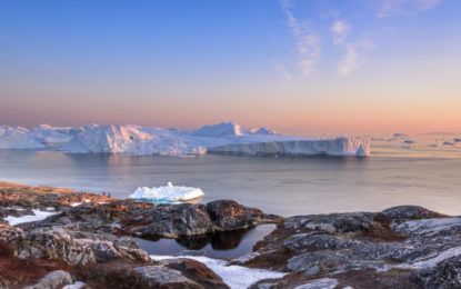 Arctic environment has 'knock-on effects around globe'