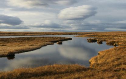 Bids open for £10m peatland restoration