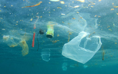 Michael Gove to tackle plastic pollution