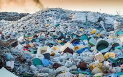 'Plastic's not so fantastic' says ecologist