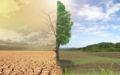 Global temperatures 'likely to exceed 2°C this century'