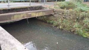 United Utilities fined £666k for raw sewage pollution