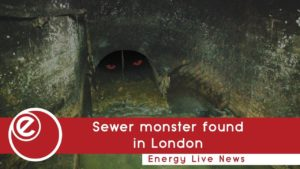 Fatty sewer monster found under London streets